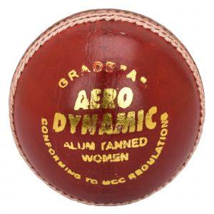 BDM Aero Dynamic/King Fisher Turf Cricket Ball