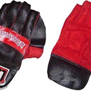 BDM Ambassador Wicket Keeping Gloves