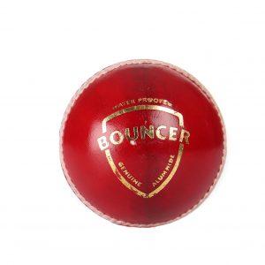 SG Bouncer Leather Cricket Ball