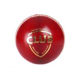 SG Club Leather Cricket Ball