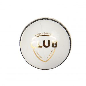 SG Club White Leather Cricket Ball