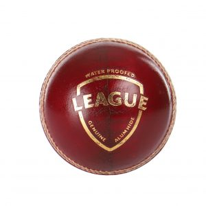 SG League Cricket Balls Leather