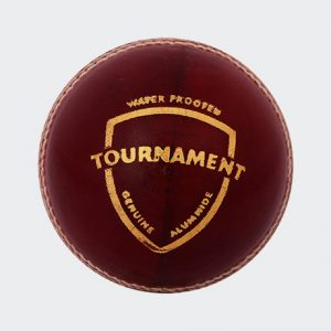 SG Tournament Cricket Balls Leather