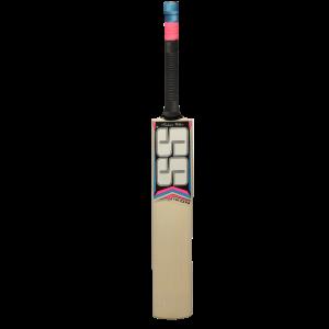 SS 281 Kashmir Willow Cricket Bat