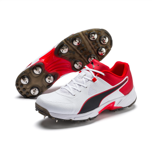 PUMA Spike 19.1 Men's Cricket Shoes