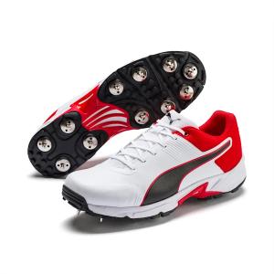 PUMA Spike 19.2 Men's Cricket Boots