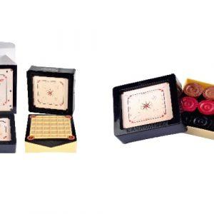 Precise Elegant Carrommen (in Patented Carrom Shape Plastic Box)