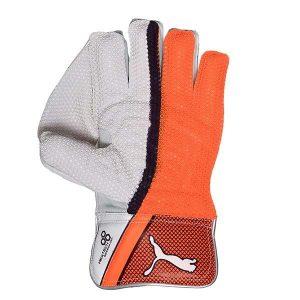 Puma EVO 1 Wicket Keeping Gloves