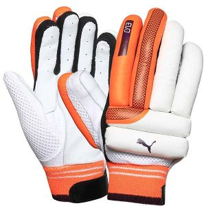 Puma EVO 2 Batting Gloves
