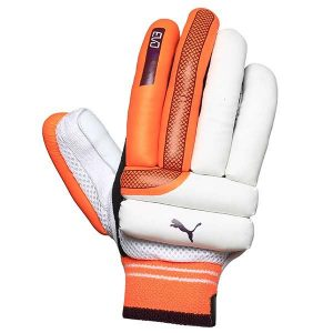 Puma EVO 2 Batting Gloves