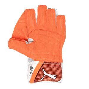 Puma EVO 2 Wicket Keeping Gloves