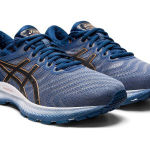 ASICS GEL-NIMBUS 22 Men Sports Shoes