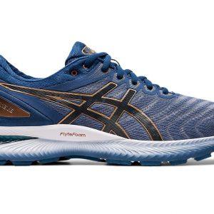 ASICS GEL-NIMBUS 22 Men Sports Shoes