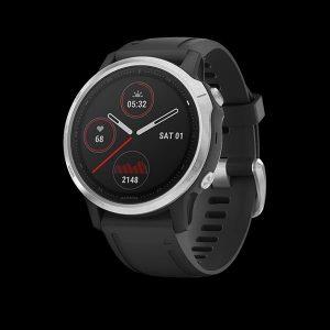 Garmin Fenix 6S Watch