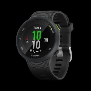 Garmin Forerunner 45 Watch